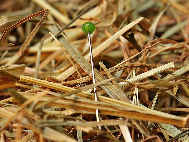 needle-in-a-haystack-1752846__480