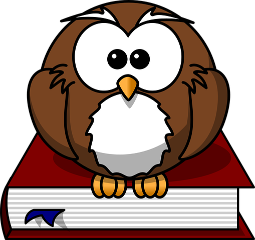 owl-47526__480
